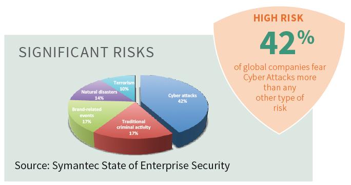 Significant Risks